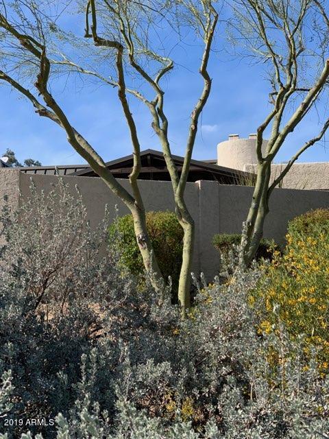 4544 E Pebble Ridge Road, Paradise Valley, AZ 85253 (MLS #5882909) :: My Home Group