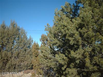 7066 N Buck Ridge Road, Williams, AZ 86046 (MLS #5887620) :: Riddle Realty Group - Keller Williams Arizona Realty