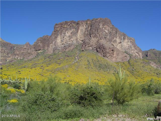 2075 N Holmes Road, Apache Junction, AZ 85119 (MLS #5891028) :: The W Group