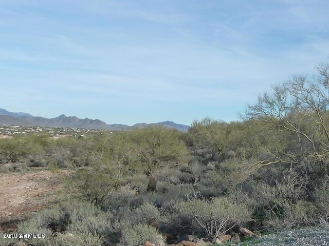 0 W Joy Ranch Road, Phoenix, AZ 85086 (MLS #5894425) :: CC & Co. Real Estate Team
