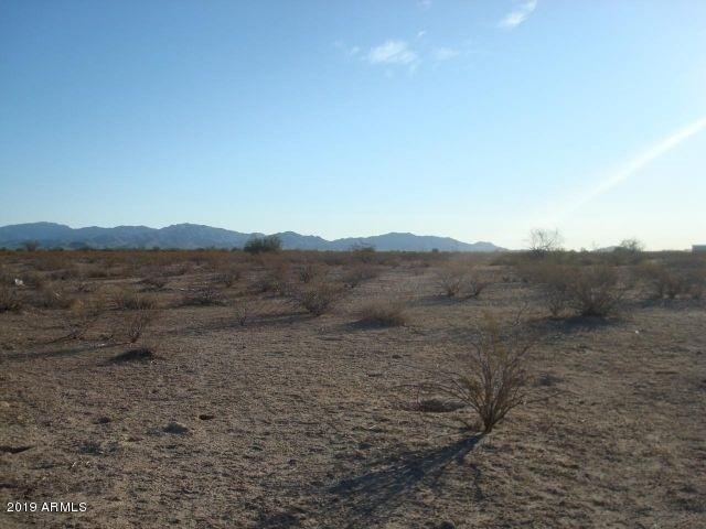XXX N 299th Avenue, Buckeye, AZ 85326 (MLS #5895181) :: Keller Williams Realty Phoenix