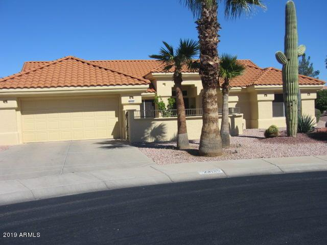 23125 N 146TH Lane, Sun City West, AZ 85375 (MLS #5896955) :: The Jesse Herfel Real Estate Group