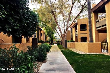8500 E Indian School Road #115, Scottsdale, AZ 85251 (MLS #5898106) :: Conway Real Estate