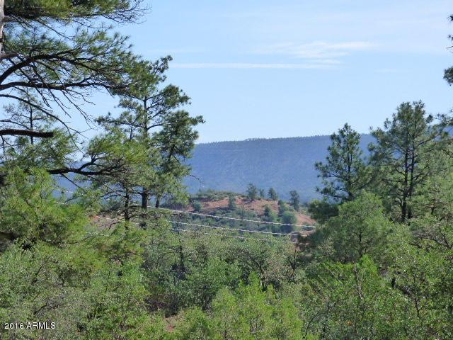 39 Saddleback Trail - Photo 1