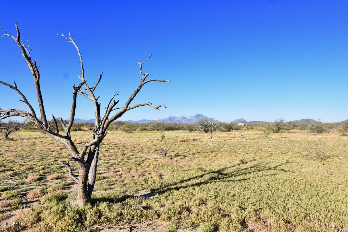 8850 Howling Coyote Trail - Photo 1