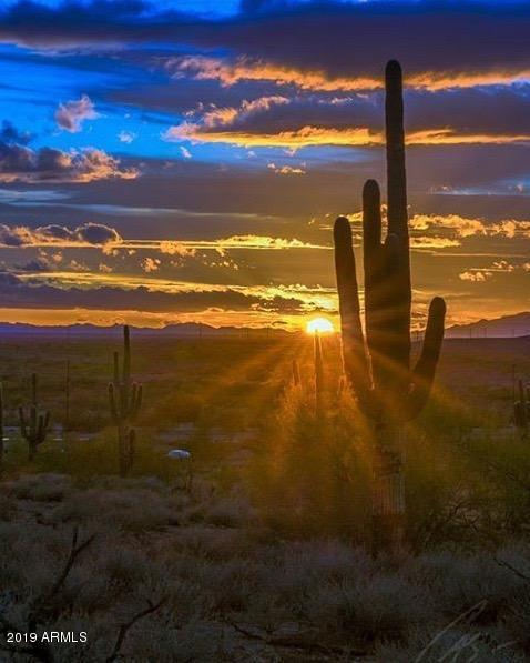 5006 S Gold Canyon Drive, Gold Canyon, AZ 85118 (MLS #5900153) :: The Laughton Team