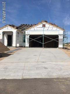 240 N 202ND Lane, Buckeye, AZ 85326 (MLS #5905218) :: Yost Realty Group at RE/MAX Casa Grande