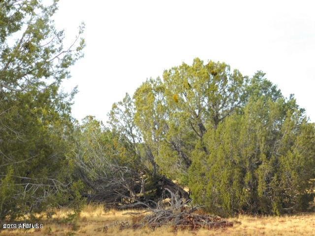 Lot 432 Sharp Rock Road, Seligman, AZ 86337 (MLS #5905446) :: Brett Tanner Home Selling Team