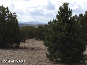 CR 8202 Lancelot Ln, Vernon, AZ 85940 (MLS #5906265) :: Brett Tanner Home Selling Team