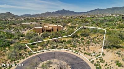 38896 N 107TH Way, Scottsdale, AZ 85262 (MLS #5909437) :: The Bill and Cindy Flowers Team