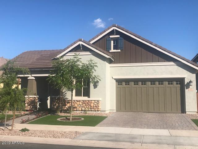 4230 E Ronald Street, Gilbert, AZ 85295 (MLS #5912887) :: Power Realty Group Model Home Center