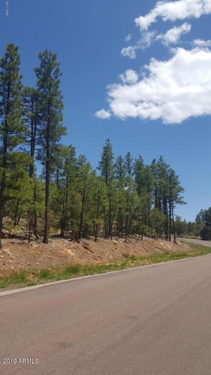 2281 Bristle Cone Drive - Photo 1
