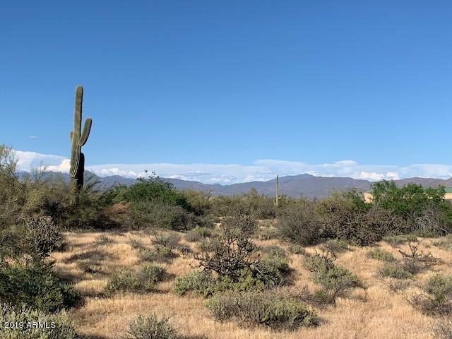 16200 E Lone Mountain Road, Scottsdale, AZ 85262 (MLS #5915440) :: The Ford Team