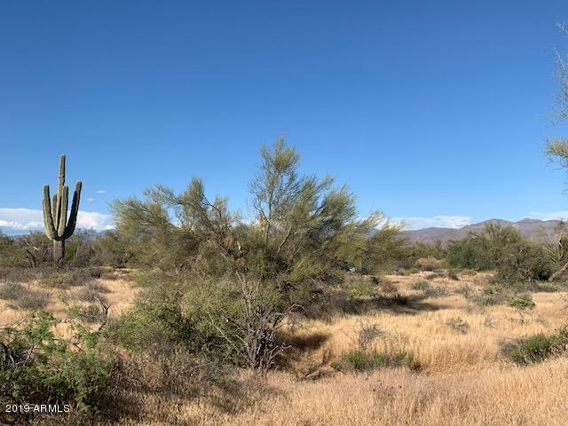 31600 N 162nd Street, Scottsdale, AZ 85262 (MLS #5915442) :: The Ford Team