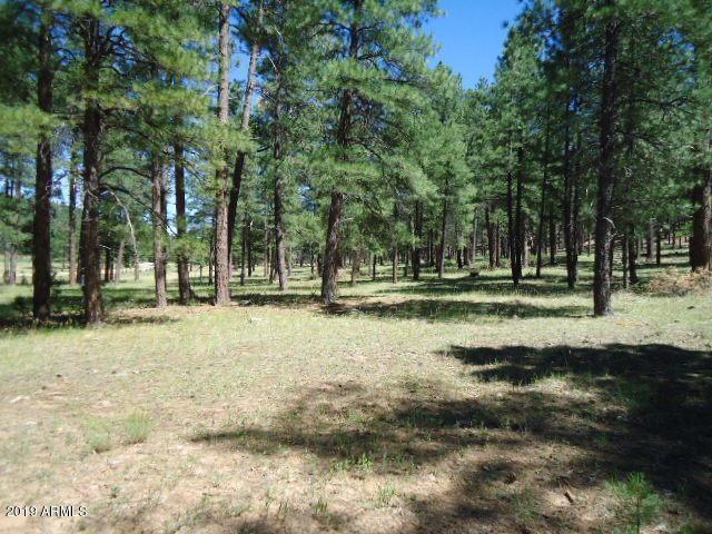 17973 S Dixie Lane, Munds Park, AZ 86017 (MLS #5915939) :: CC & Co. Real Estate Team