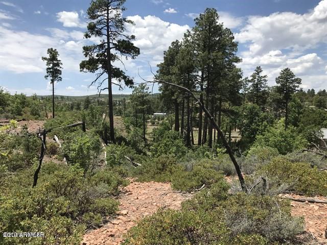 930 Old Settler Trail, Show Low, AZ 85901 (MLS #5916747) :: The Kenny Klaus Team