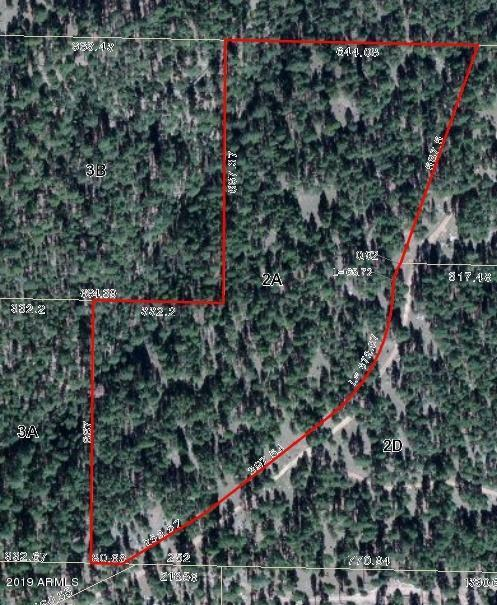2A Coconino Forest Rd 137A - Photo 1