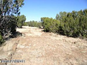 Lot 140 Show Low Pines Unit 9, Concho, AZ 85924 (MLS #5921089) :: Yost Realty Group at RE/MAX Casa Grande