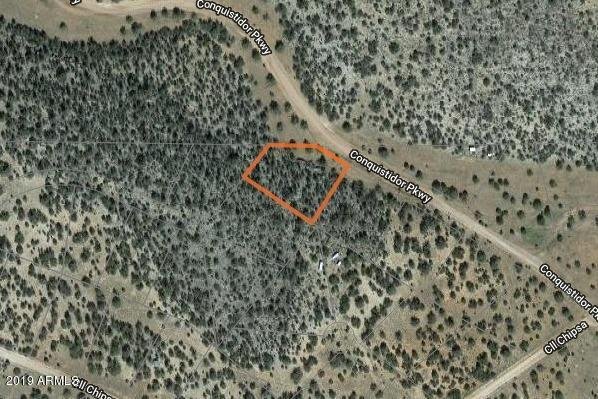 51980 N Conquistador Parkway, Seligman, AZ 86337 (MLS #5921146) :: Midland Real Estate Alliance
