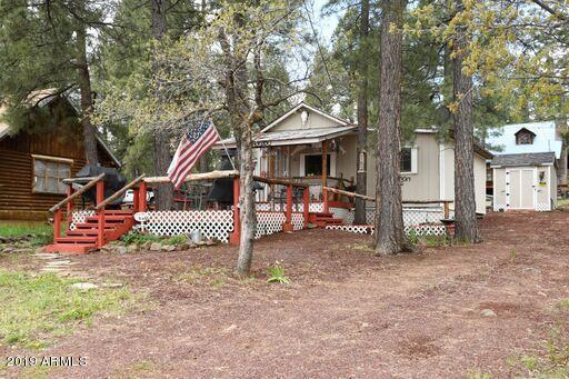 146 Oak Drive, Mormon Lake, AZ 86038 (MLS #5929738) :: Yost Realty Group at RE/MAX Casa Grande