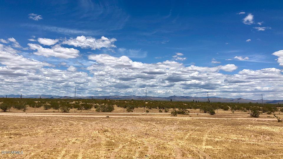 25739 Lone Mountain Road - Photo 1