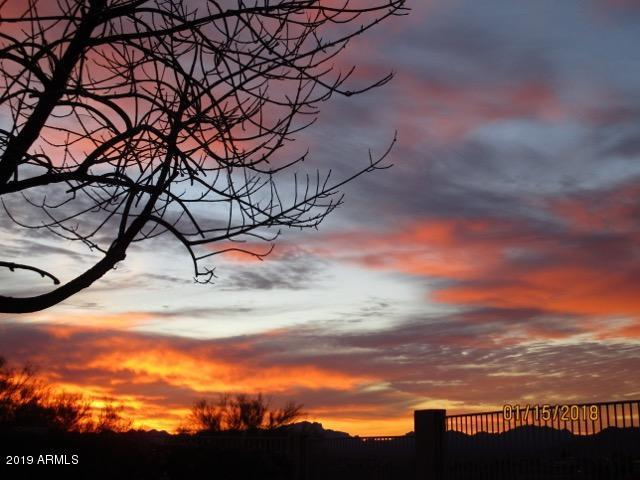 16147 E Glenview Drive, Fountain Hills, AZ 85268 (MLS #5936326) :: Brett Tanner Home Selling Team