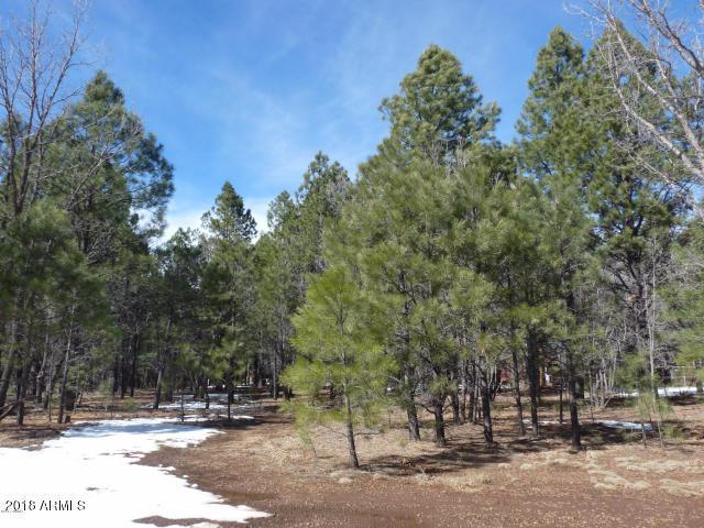 3904 Roaring Fork Drive, Pinetop, AZ 85935 (MLS #5938756) :: Revelation Real Estate