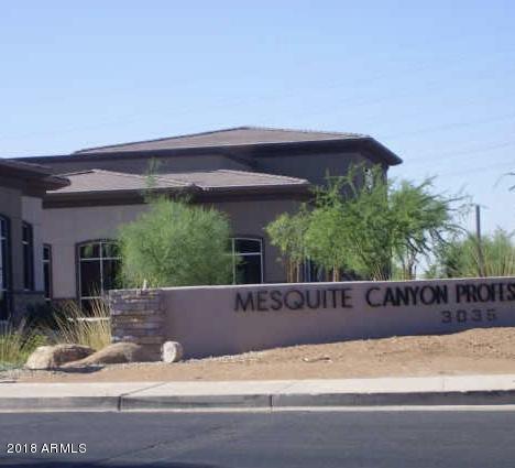 3035 S Ellsworth Road #111, Mesa, AZ 85212 (MLS #5939953) :: The W Group