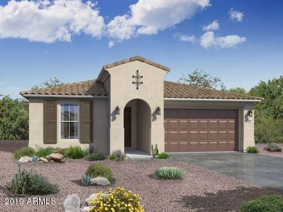 19955 W Heatherbrae Drive, Litchfield Park, AZ 85340 (MLS #5940875) :: Devor Real Estate Associates