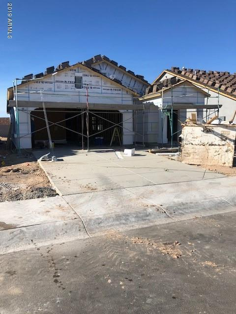 20220 W Woodlands Avenue, Buckeye, AZ 85326 (MLS #5942748) :: Riddle Realty