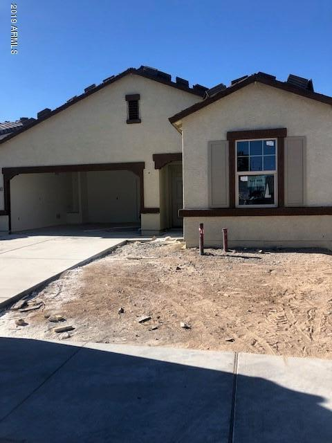 20232 W Woodlands Avenue, Buckeye, AZ 85326 (MLS #5942755) :: Riddle Realty