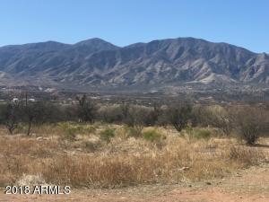 4X Rodeo Drive, Tonto Basin, AZ 85553 (MLS #5942942) :: Homehelper Consultants