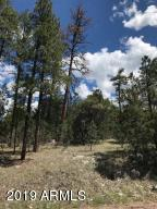 44 Homestead Lane, Payson, AZ 85541 (MLS #5943955) :: The Property Partners at eXp Realty