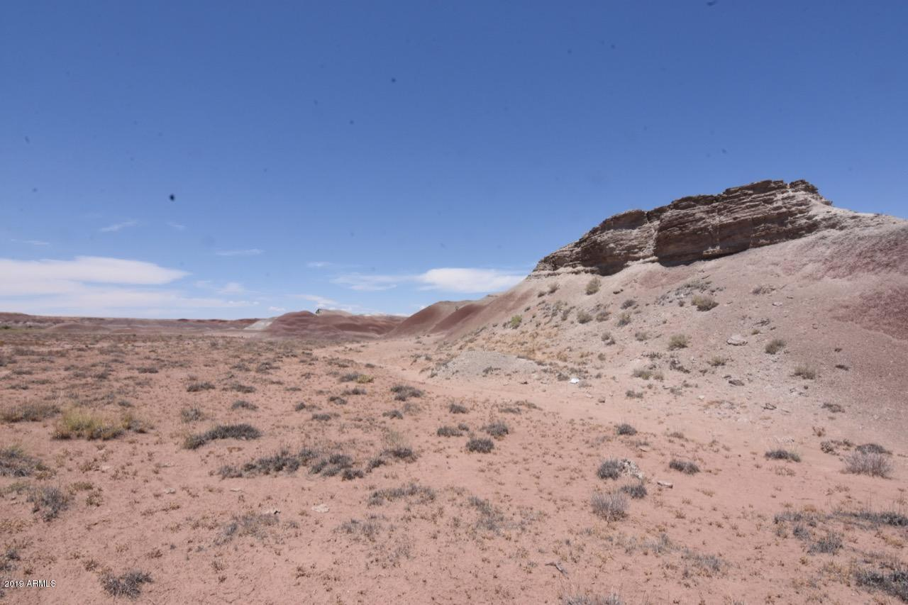 347 Painted Desert Ranches - Photo 1