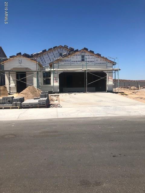 20208 W Woodlands Avenue, Buckeye, AZ 85326 (MLS #5950803) :: The Property Partners at eXp Realty