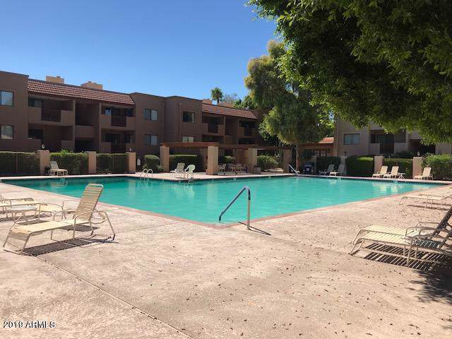 3031 N Civic Center Plaza #236, Scottsdale, AZ 85251 (MLS #5952659) :: Riddle Realty