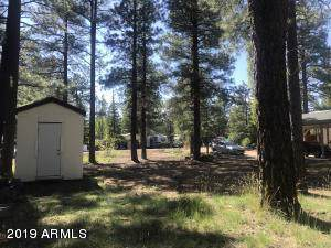 17045 S Mescalero Drive, Munds Park, AZ 86017 (MLS #5955534) :: Riddle Realty