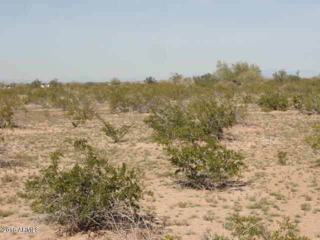 52610 W Pampas Grass Road, Maricopa, AZ 85139 (MLS #5958892) :: Occasio Realty