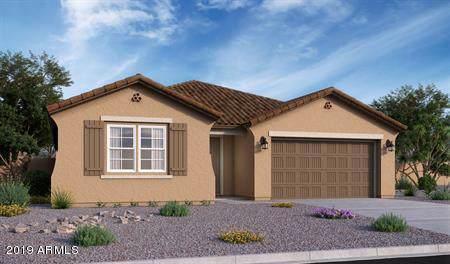 12428 N 146TH Lane, Surprise, AZ 85379 (MLS #5961469) :: Conway Real Estate