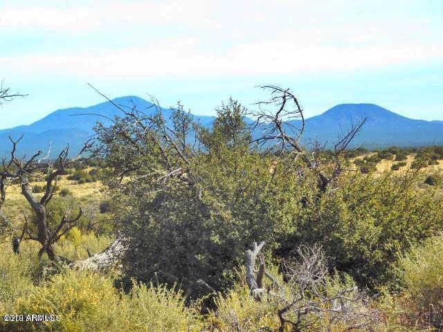 10751 W Line Cook Trail, Williams, AZ 86046 (MLS #5961491) :: Arizona Home Group