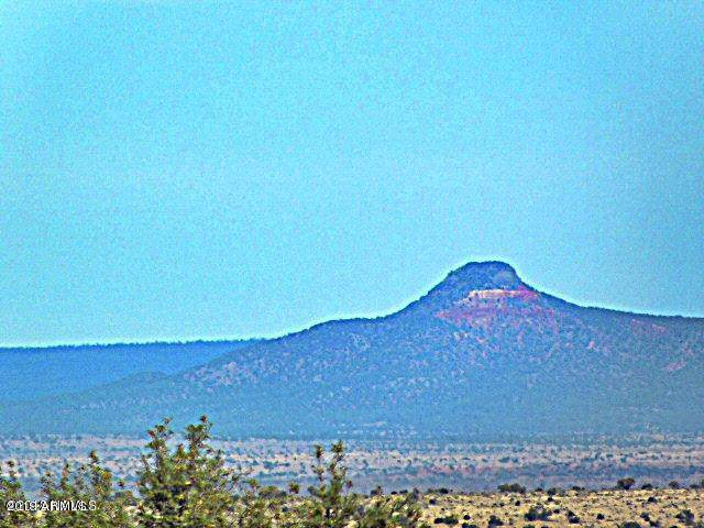 10756 W Line Cook Trail, Williams, AZ 86046 (MLS #5961503) :: Arizona Home Group