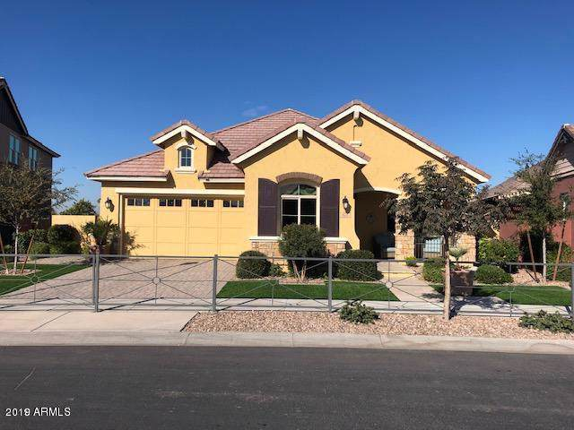 4188 E Dwayne Street, Gilbert, AZ 85295 (MLS #5963661) :: Revelation Real Estate