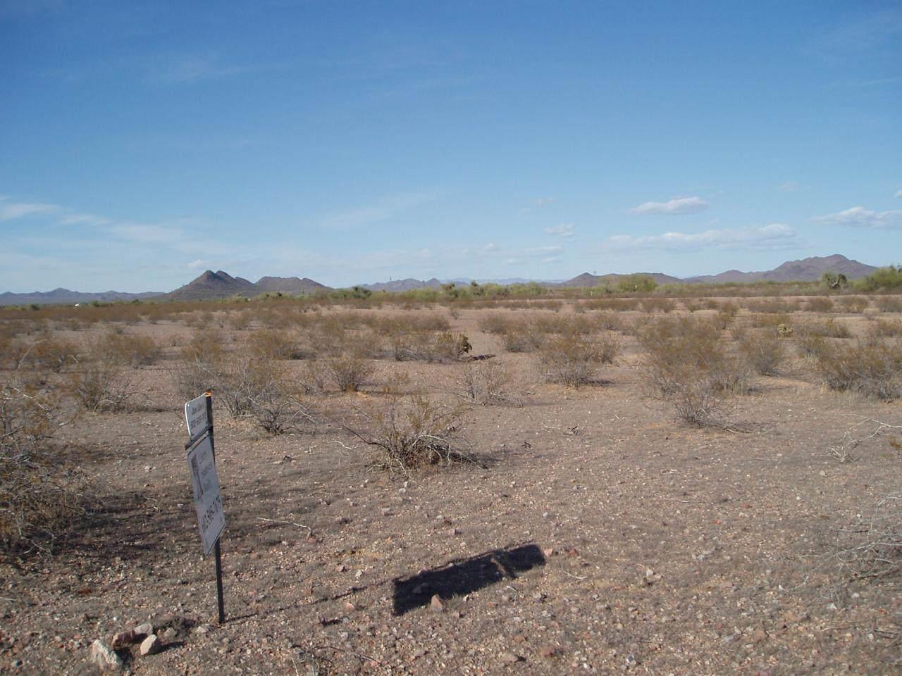 31298 Wildcat Drive - Photo 1