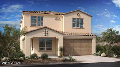 9559 W Cashman Drive, Peoria, AZ 85383 (MLS #5964819) :: CC & Co. Real Estate Team