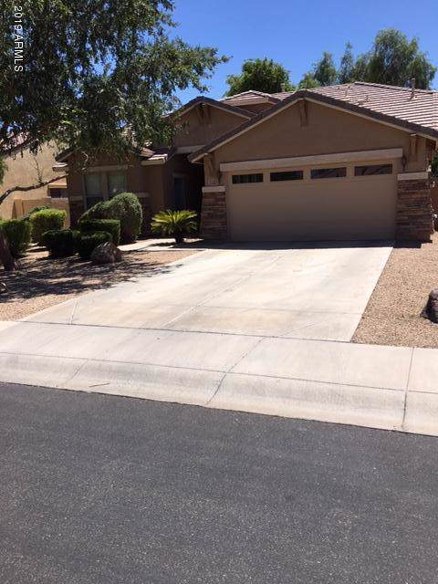3283 E Roadrunner Drive, Chandler, AZ 85286 (MLS #5965119) :: CC & Co. Real Estate Team