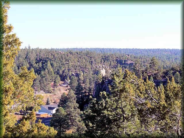 107 Midnight Sky Road, Heber, AZ 85928 (MLS #5967584) :: Riddle Realty Group - Keller Williams Arizona Realty