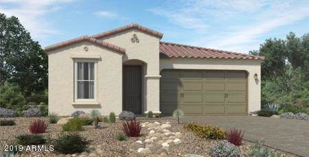 9520 E Thatcher Avenue, Mesa, AZ 85212 (MLS #5967993) :: CC & Co. Real Estate Team