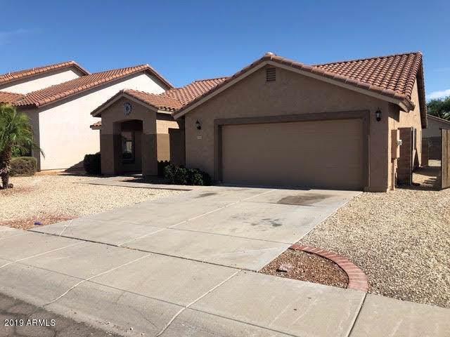 10401 W Ashbrook Place, Avondale, AZ 85392 (MLS #5968317) :: Occasio Realty