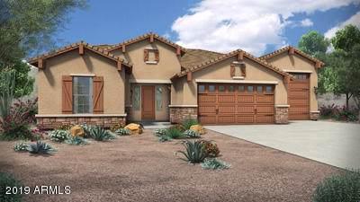 13824 N 71st Lane, Peoria, AZ 85381 (MLS #5968946) :: Brett Tanner Home Selling Team