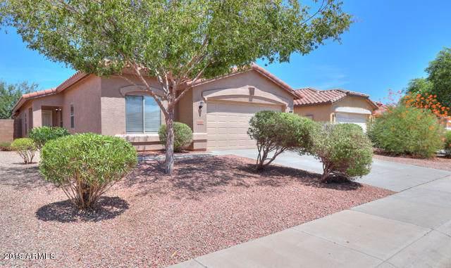 43624 W Bedford Drive, Maricopa, AZ 85138 (MLS #5969026) :: The Kenny Klaus Team